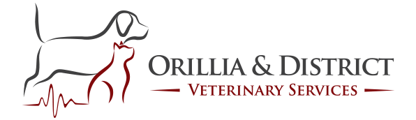 Orillia & District Veterinary Services